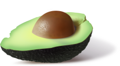 avocado-161822_960_720.png
